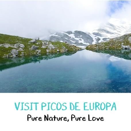 visit picos de europa